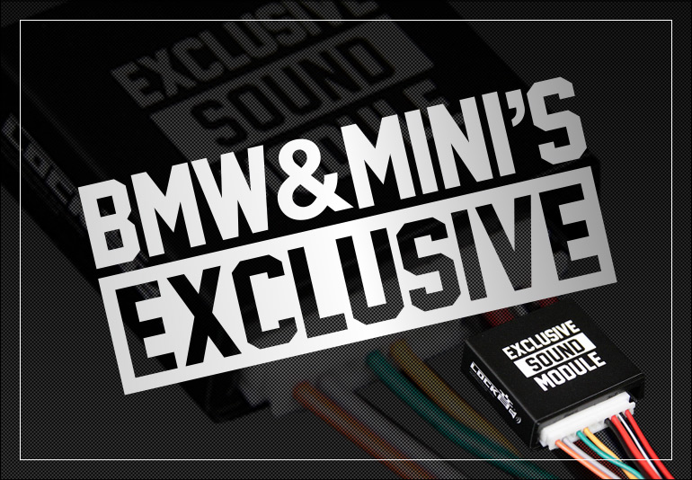 LOCK音 for BMW&MINI'S EXCLUSIVE